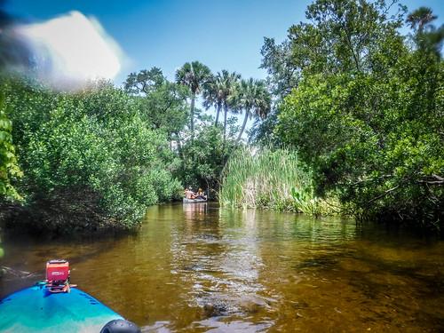 Juniper Springs Creek-138