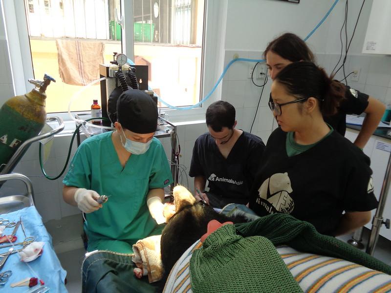 V031 Zebedee Oronasal fistula repair 29.05.17  (15)