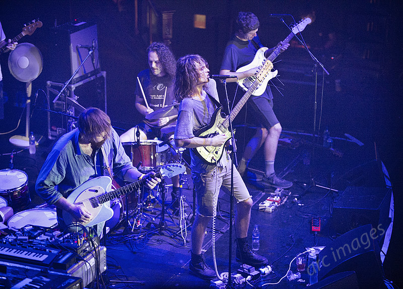 King Gizzard and the Lizard Wizard Manchester Albert Hall