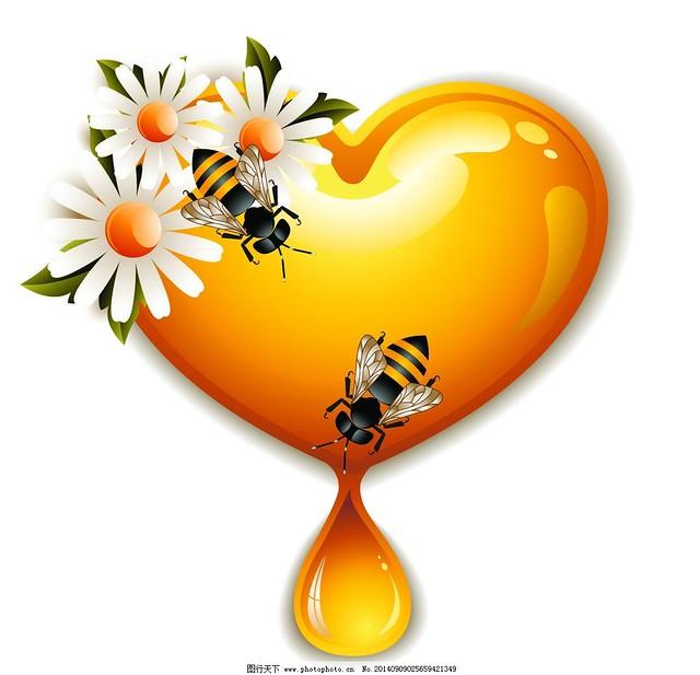 mật ong có tác dụng giảm cholestron xấu, điều trị bệnh tim mạch