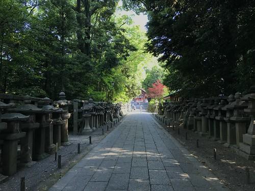 iwashimizuhatimangu49