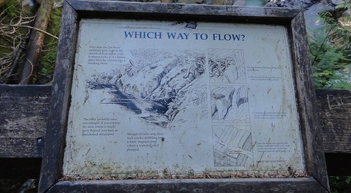 "Image shows a sign mounted on the overlook rail at the Tye River. It asks, ""Which Way to Flow?"" An illustration of a bit of the river occupies the middle. Around it, blurbs say, ""Why does the Tye River suddenly turn right in the stretch of river below you? It almost looks as if a thirsty giant bent the channel like a drinking straw. The river probably once ran straight. If you explore the area where it might have flowed, you find an abandoned streambed. Meager rivulets seem from rock cracks, dribbling into a dark, stagnant pool where a waterfall once plunged."" To the right are three illustrations and some speculations that will be described in the next photo."
