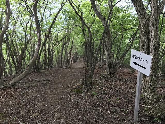 烏帽子岳 細野ルート 大岩・展望岩コース分岐