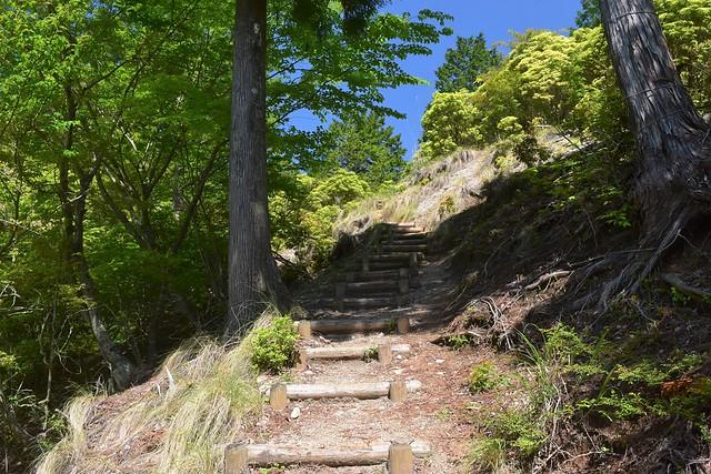 畦ヶ丸 階段の登山道