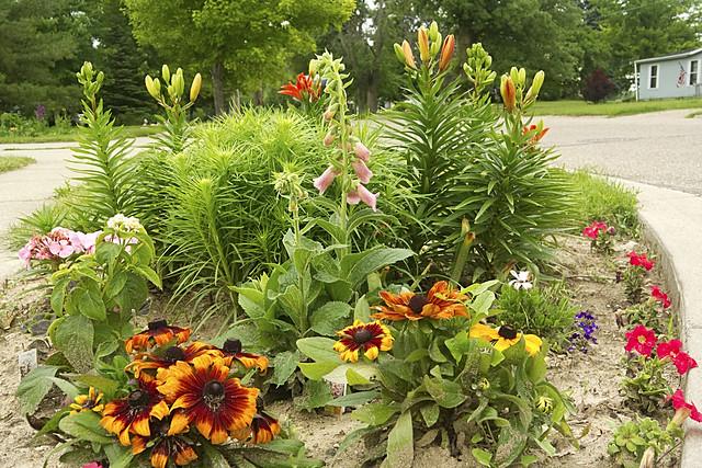 The Street Corner Garden