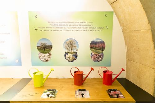 4 Saisons, l'expo intéractive (mais sans écran) pour les 3-7 ans