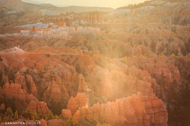 Morning at Bryce