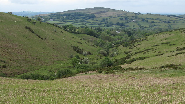 Green Combe and Meldon HIll beyond.
