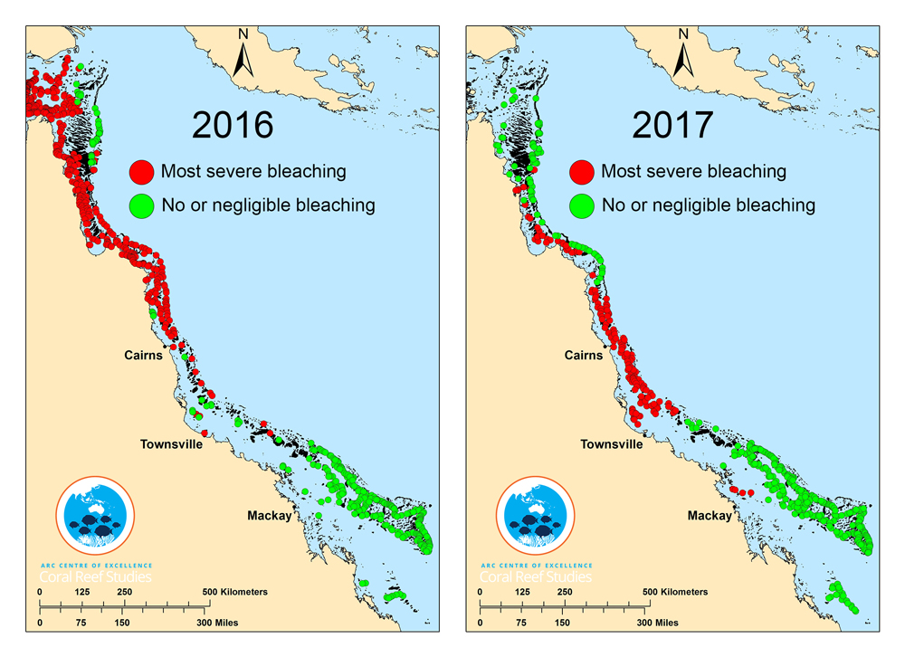 Barrier Reef Australia Map.News Is The Great Barrier Reef Now Truly Beyond Saving The