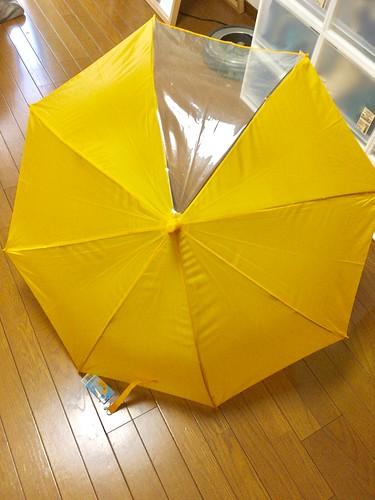 とらちゃんの新しい傘