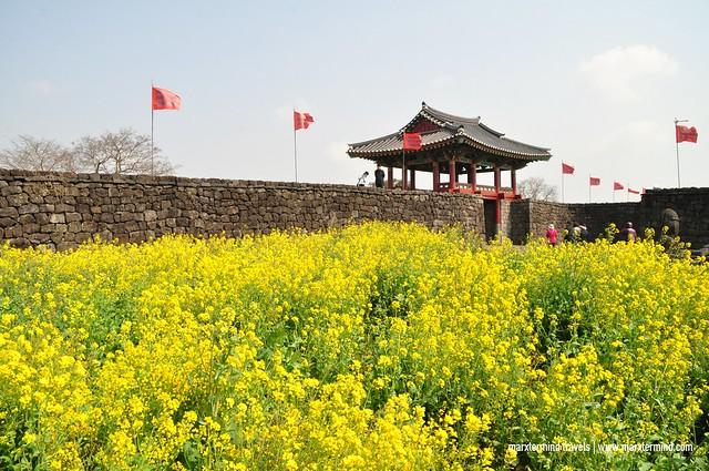 Jeju Island East Course Tour