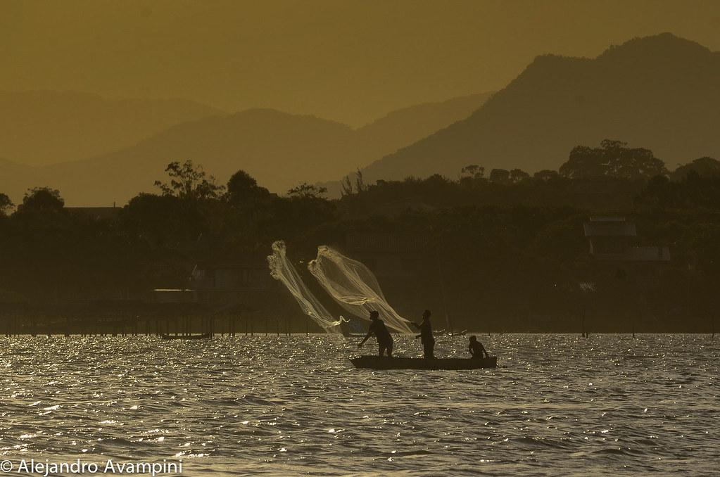 Pescadores en bote en la de Ibiraquera tirando la tarrafa sobre un cardumen de peces