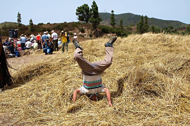 Mature Farmer, Dia de la Trilla, Tenerife