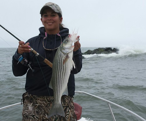 Weekly fishing report may 31 for Dnr fishing report