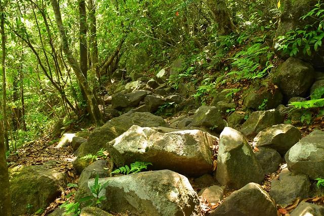 開聞岳 岩の登山道
