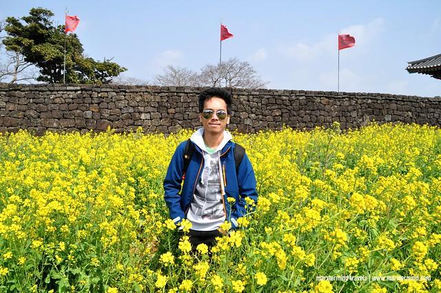 marxtermind at Eastern Jeju Island