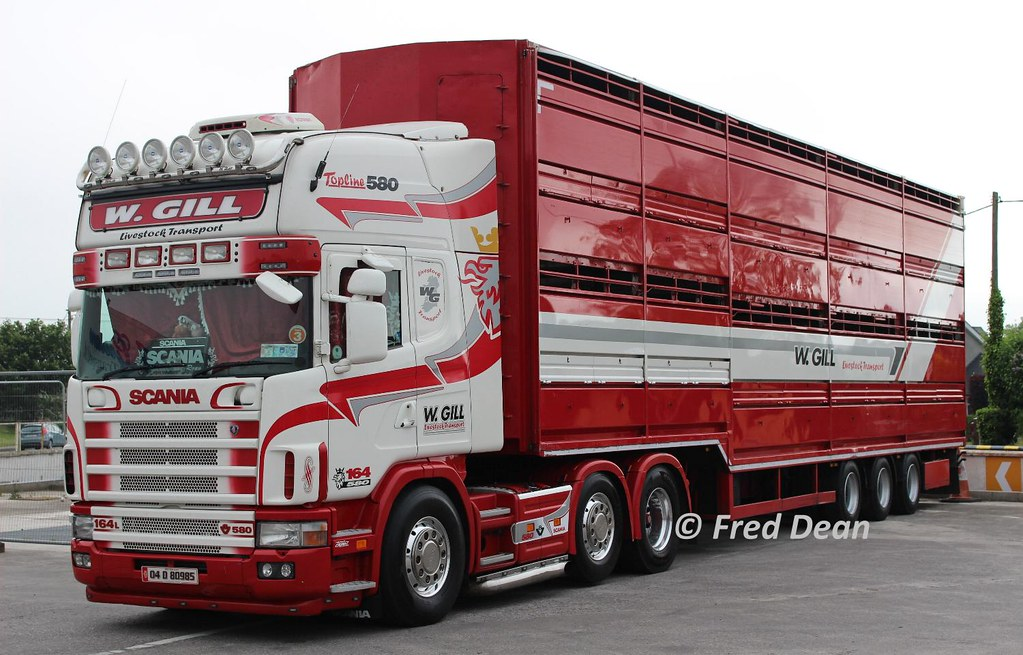 By Fred Dean Jnr W Gill Livestock Transport Scania 164 04D80985