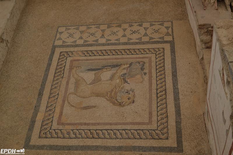Mosaicos en las Casas de las Terrazas