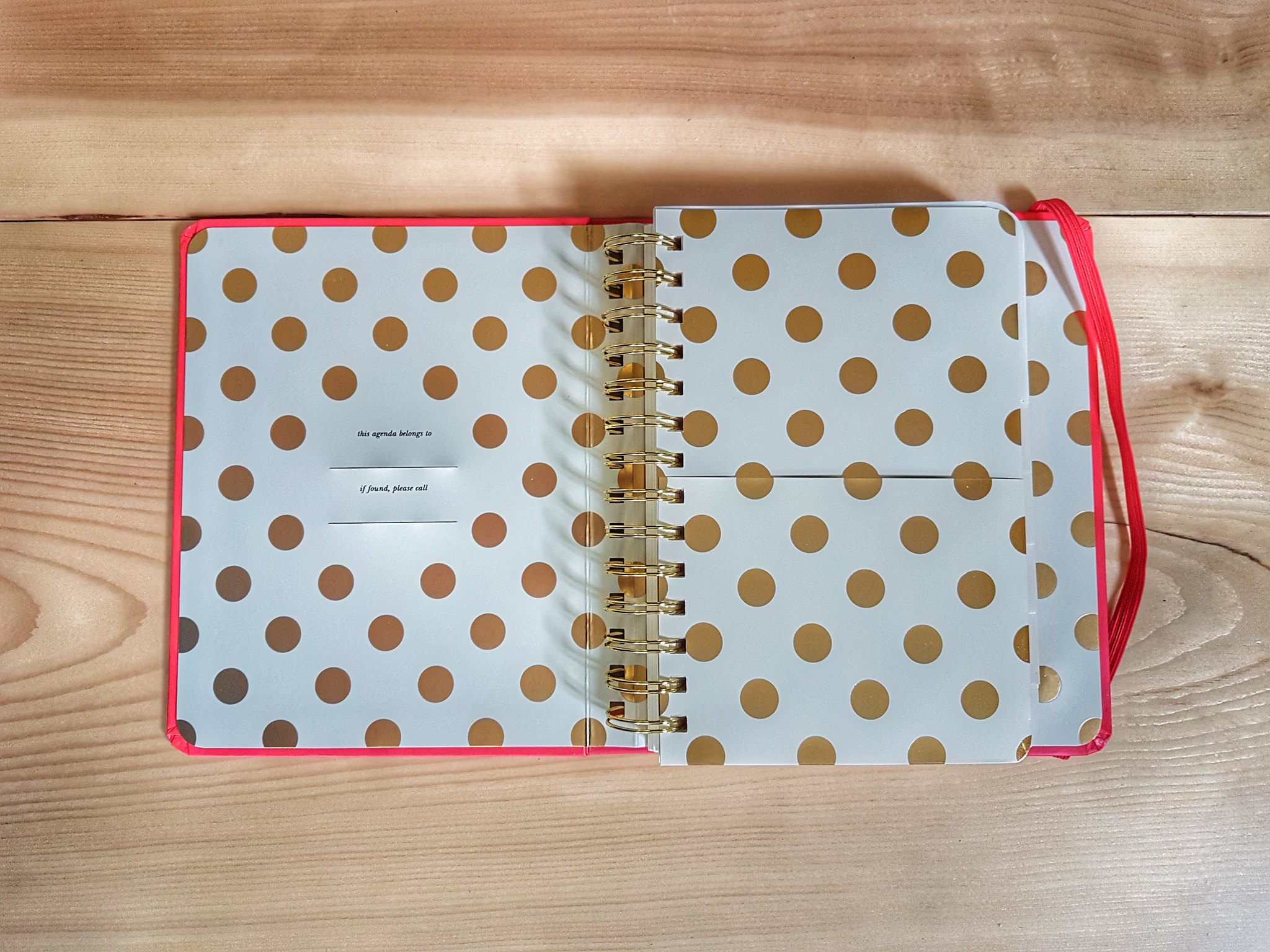 Kate Spade 2018 Fashionably Late Planner pocket