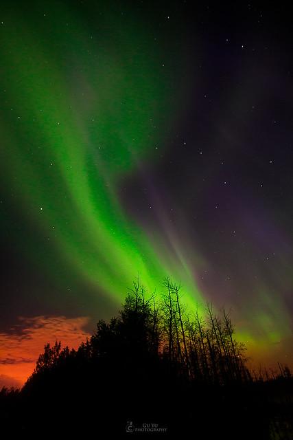 Elk Island Northern light