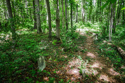 Old Stone Cemetery at Landsford Canal-016