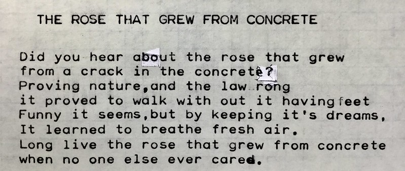 The Rose That Grew From Concrete - by Noah the Line Writer