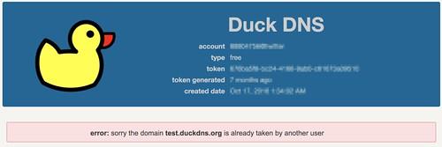 Duck DNS 2017-05-29 15-45-59