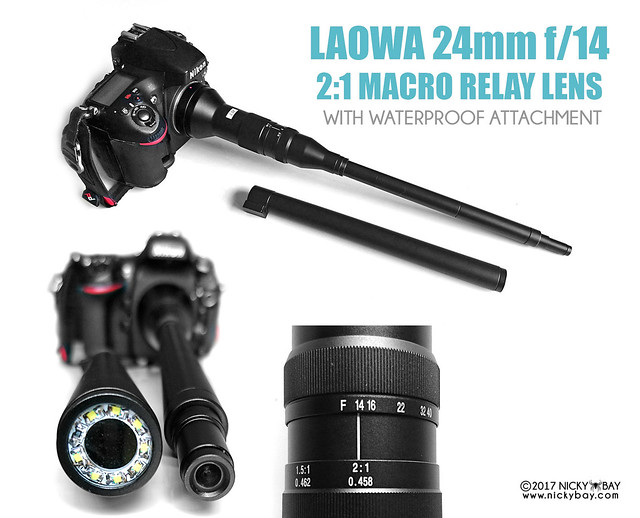 Laowa 24mm f/14 2:1 Macro Relay Sneak Preview