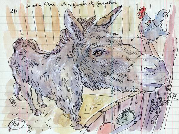 du coq à l'âne