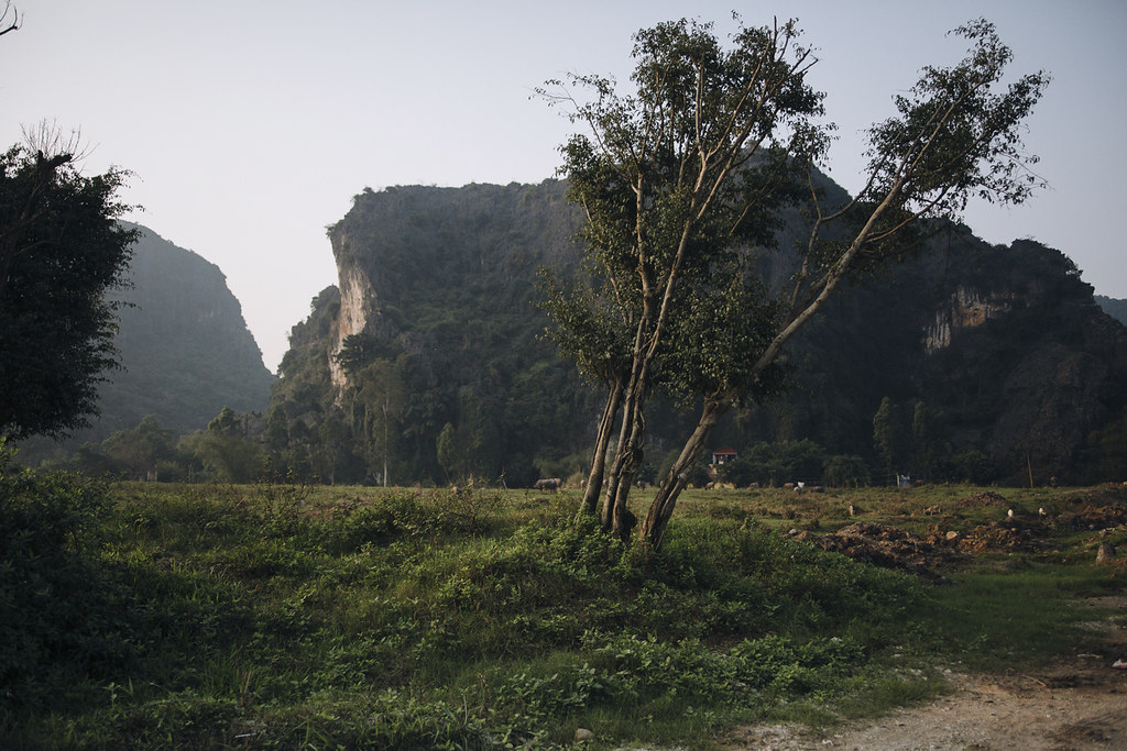 Tam_Coc_13, Ninh Binh and Tam Coc National Park, a Photo and Travel Diary by the Blog The Curly Head, Photography by Amelie Niederbuchner,