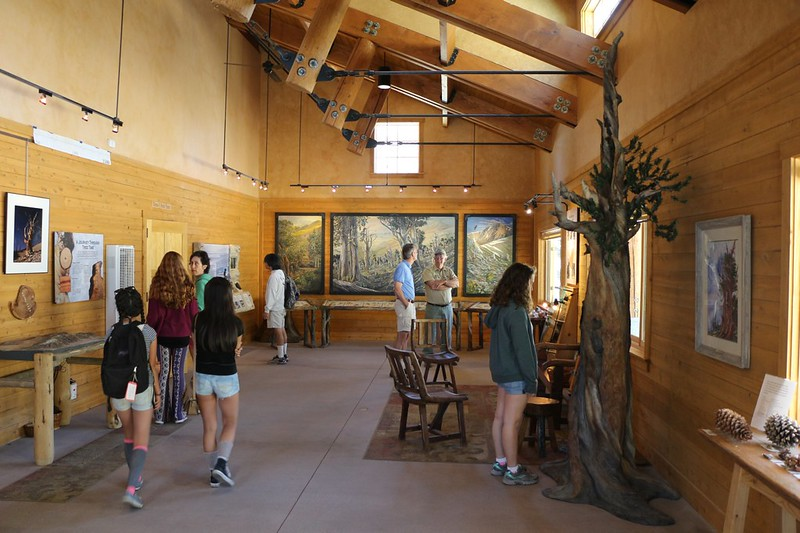 Inside the Schulman Grove Visitors Center - friendly staff and informative exhibits