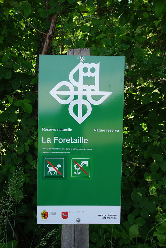 #WithNature #GENeva 2017 : Réserve naturelle de la Foretaille (Versoix)