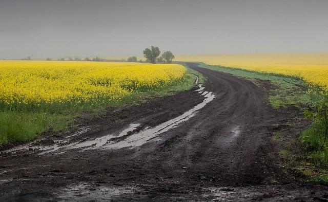Ukraine - Der Donbass 3 Jahre nach Beginn des Krieges