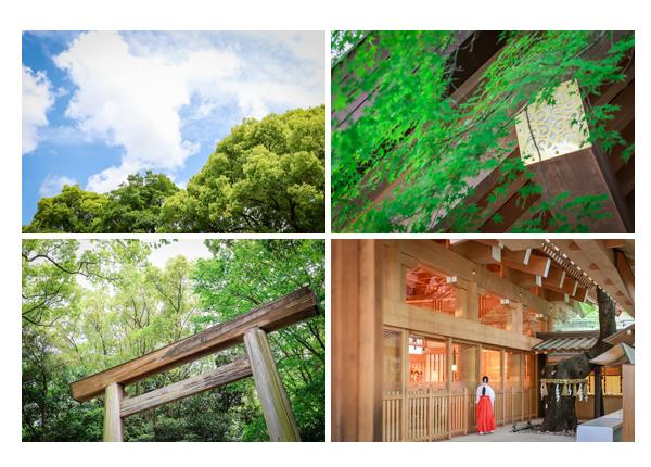 お宮参り写真 熱田神宮 名古屋市 ロケーション撮影 出張撮影 データ 人気 オススメ 着物 女の子