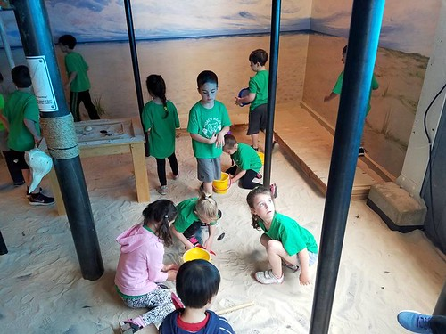 Kindergarten Field Trip 2017
