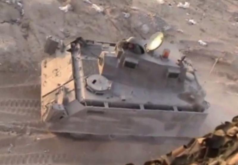 M113-Kasman-Maoz-2003-f-1