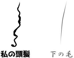 縮毛と直毛の上下が逆