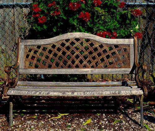 Bench in sun