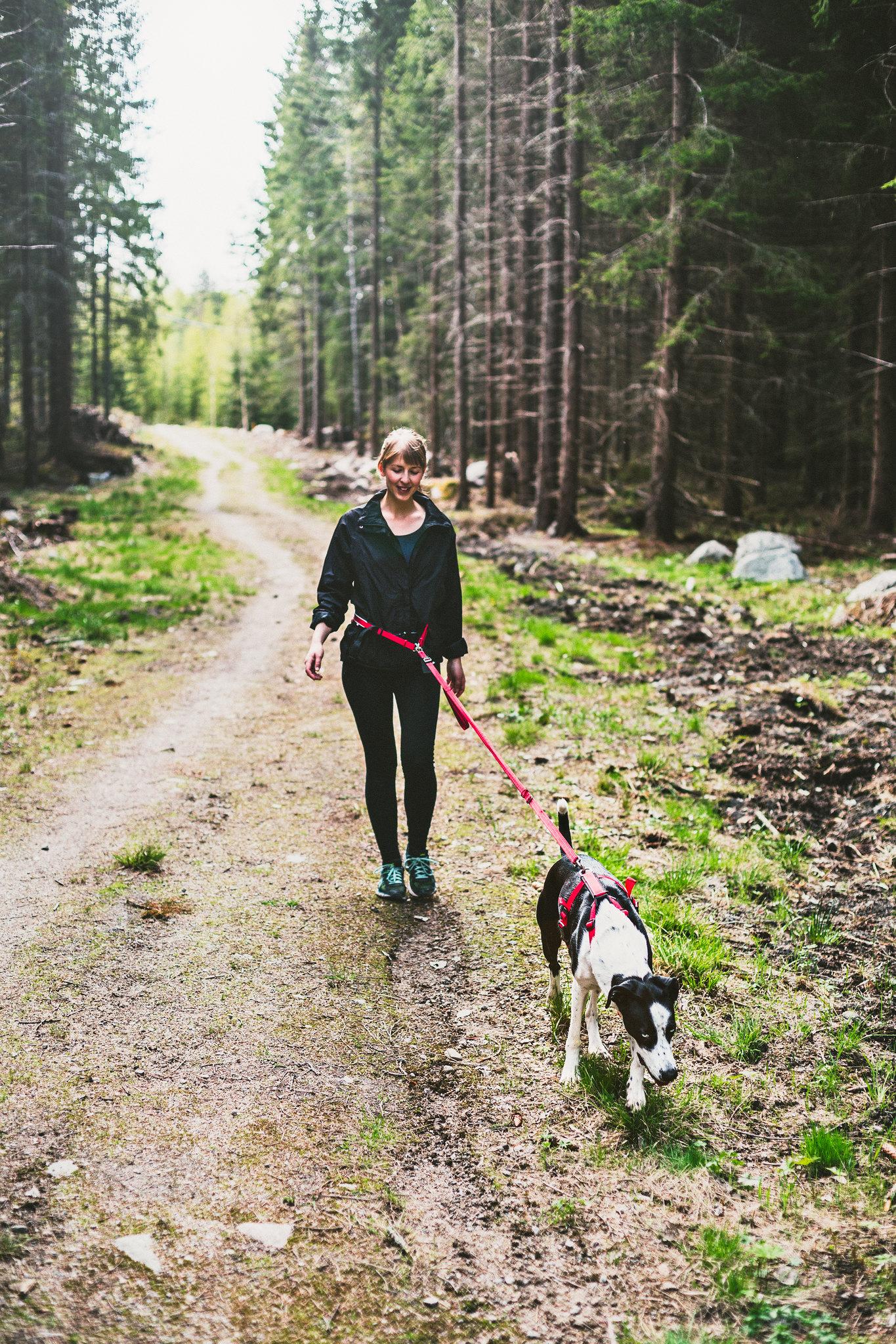Springa med hund - Evelinas Ekologiska
