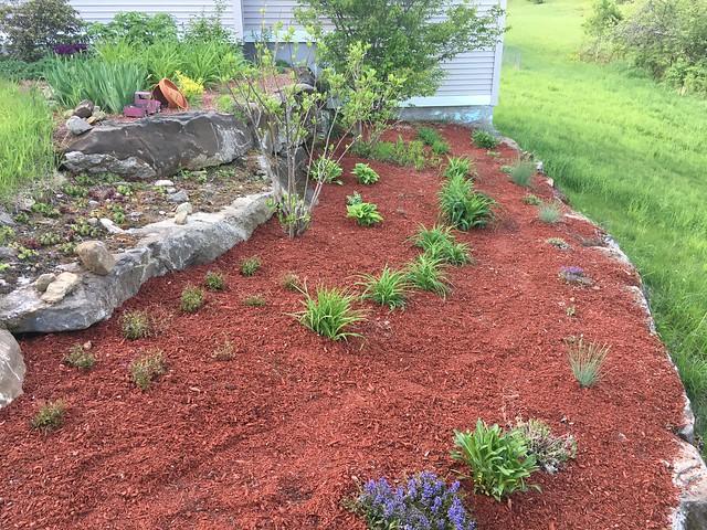 Side flower bed.