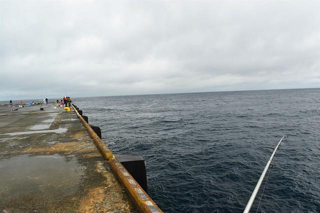 八丈島・八重根漁港で釣り