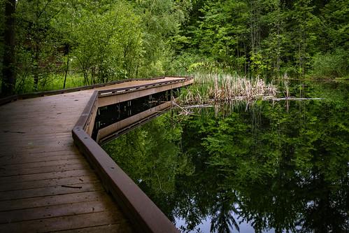 Chippewa Nature Center Michigan