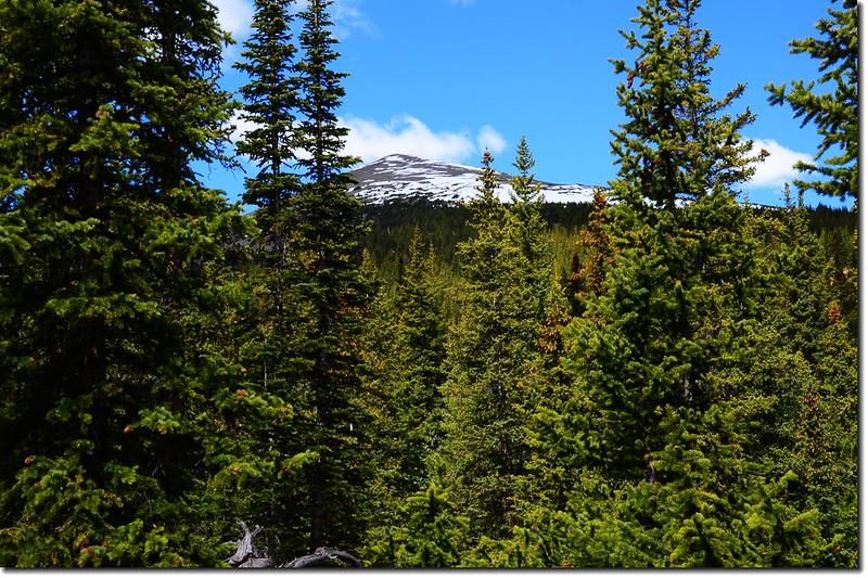 Sugarloaf Peak as seen from West Chicago Creek 2