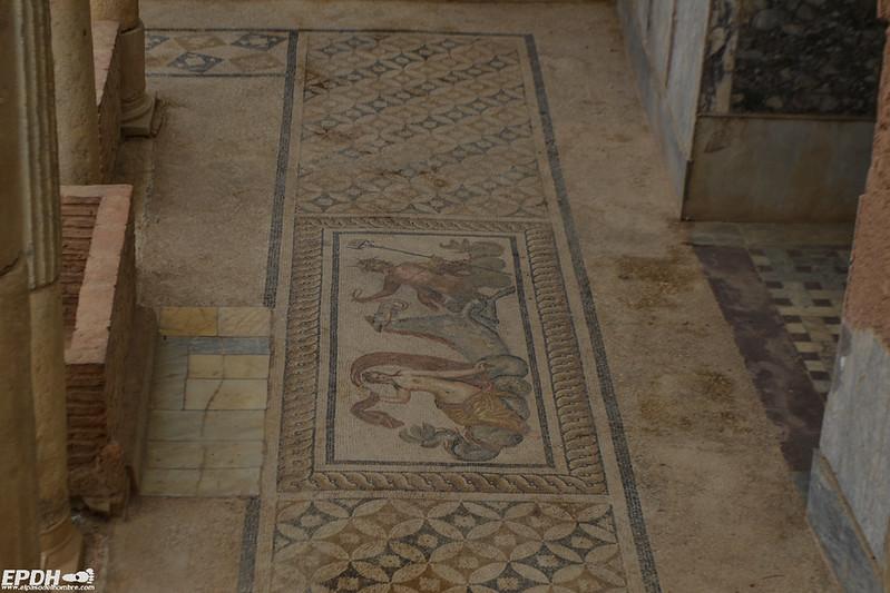Venus y Neptuno en las Casas de las Terrazas