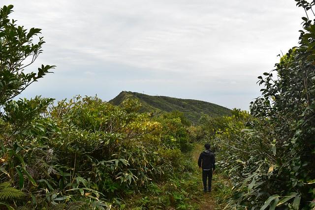 八丈島・三原山ハイキング