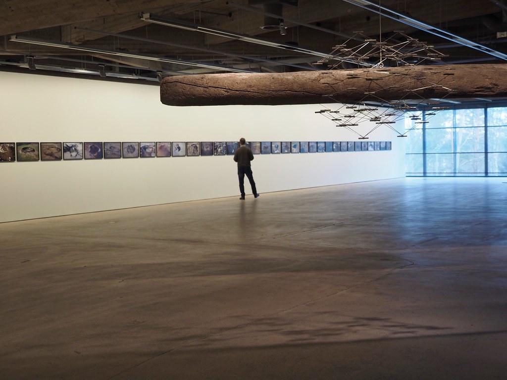modernin taiteen museo Emma