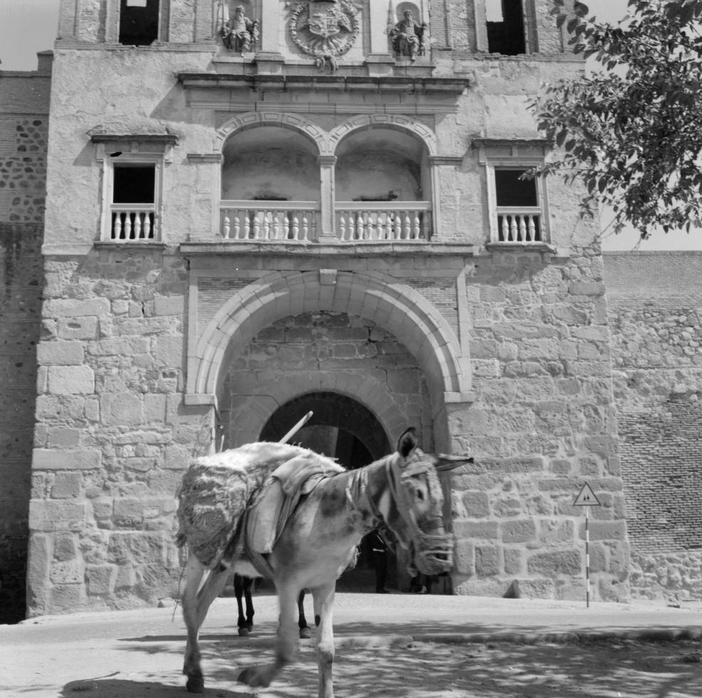 Un burro en la Puerta del Cambrón hacia 1960. Fotografía de Eugene V. Harris o Clarence Woodrow Sorensen © University of Wisconsin-Milwaukee/The Board of Regents of the University of Wisconsin System