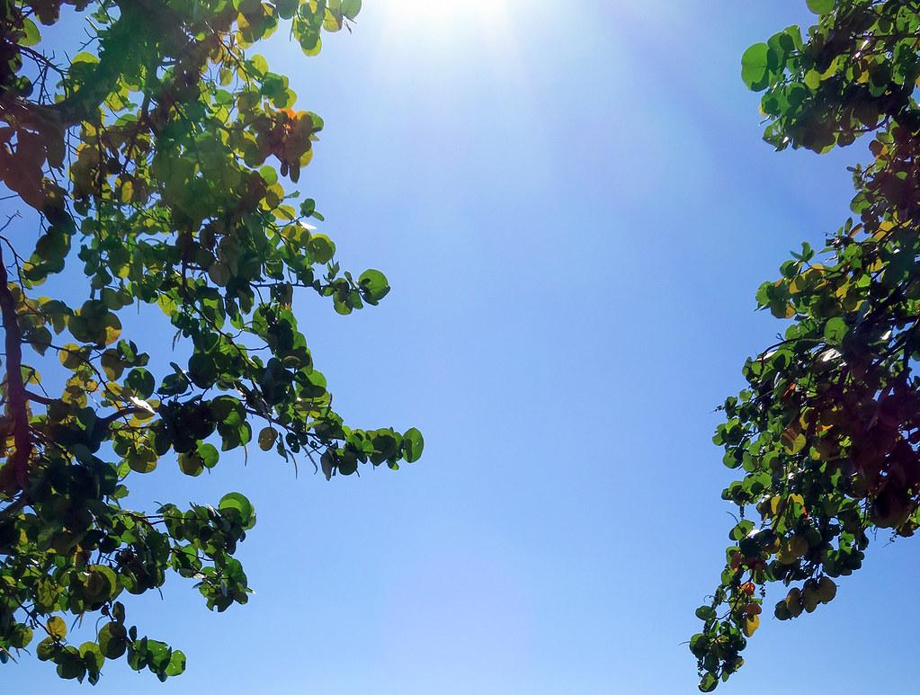 Vitamin D - Sun Exposure