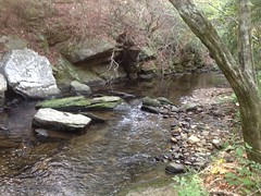 Stamp Creek - Rocks
