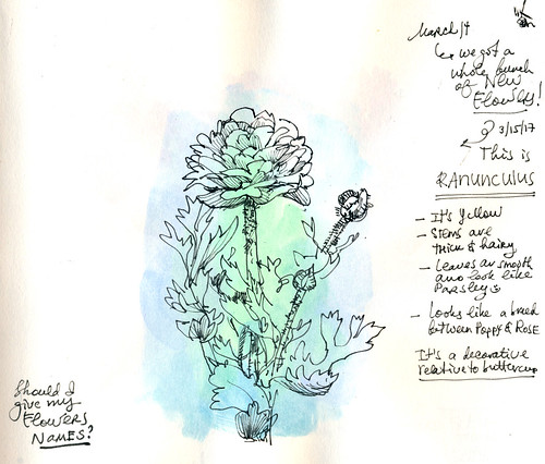 Sketchbook #104: My Flowers